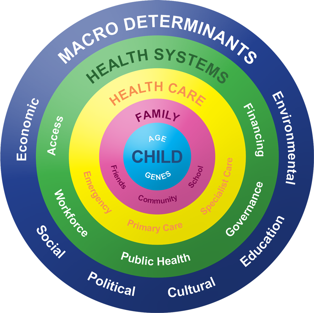 A health system and wider determinants of health