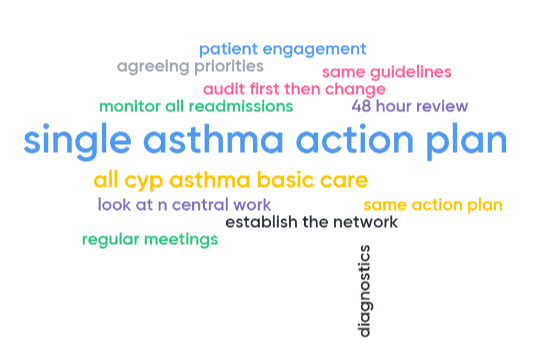 2019 HLP Asthma Network 3